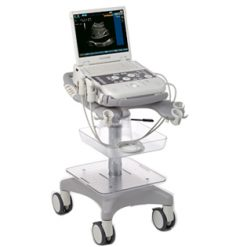 Siemens acuson P300 veterinary ultrasound machine